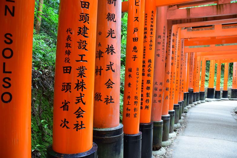 Kyoto5